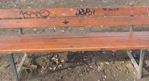 parco-della-resistenza-sporco-e-degradato-14464