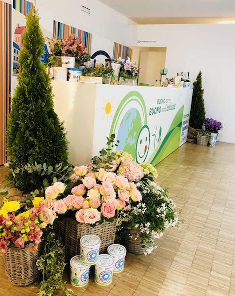 ecostenibilità e green